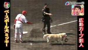 ベースボール犬